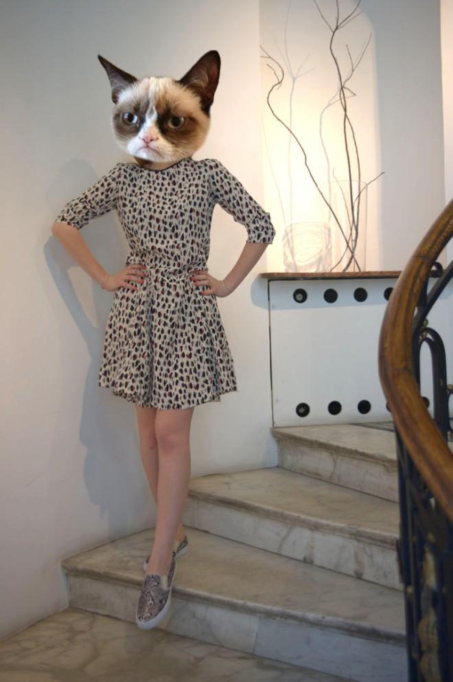 grumpy cap rochie stefanel