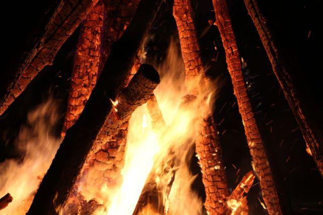 foc 3