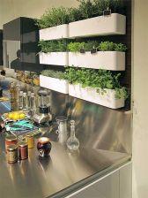 perete verde bucatarie plante aromate