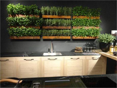 perete verde plante aromate bucatarie