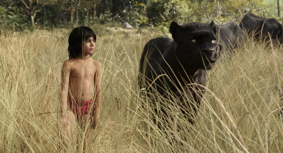 cartea junglei mowgli si bagheera